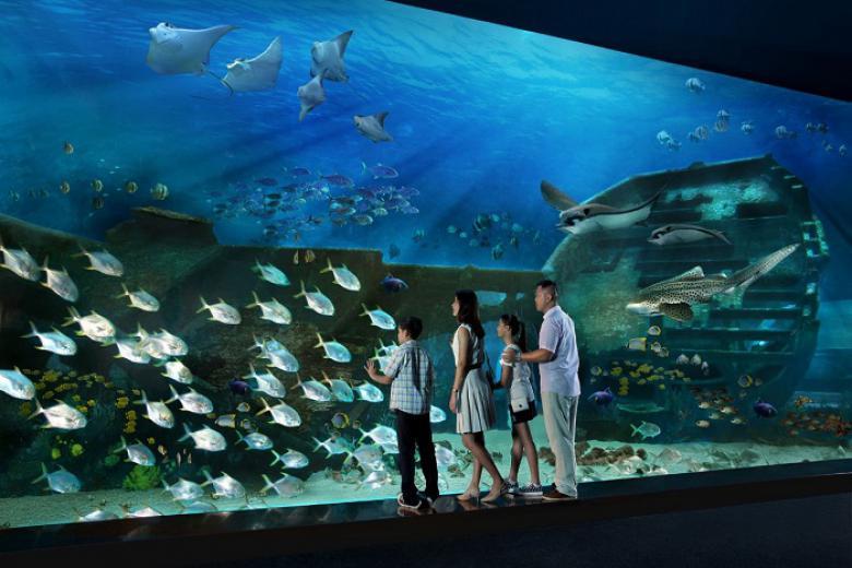 thuỷ cung SEA Aquarium